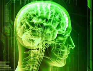 brain-green-tea1